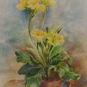 Polyanthus for mother