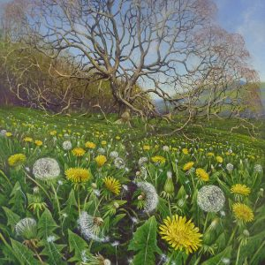 Dandelions on the Edge, Hilltop