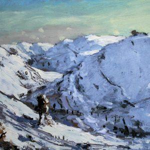 Snowy Landscape near Lake Vyrnwy