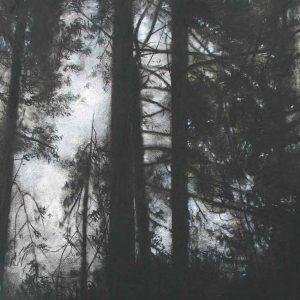 pines - pembrey