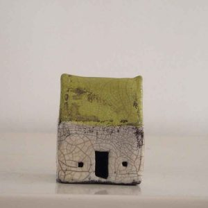 Lime Green Roof Small House