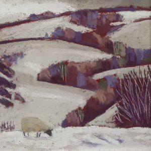 Pulverbatch, A Sheep