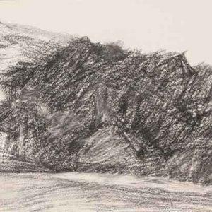 Castell Dinas Bran VI
