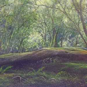 Long Log, Aldon Gutter