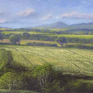 Shropshire Fields I