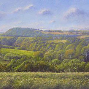 Shropshire Fields II