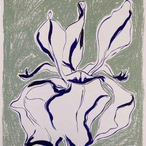Chalk Iris 3